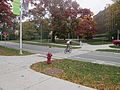 MSU 2014 Bike Crosswalk.jpg
