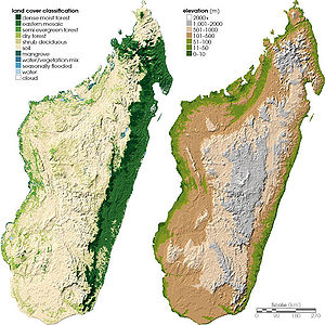 Ecoregions of Madagascar - Land cover (left) and topography (right) of Madagascar.