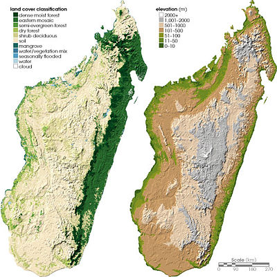 Two maps of Madagascar, showing land cover on the left and topography on the right