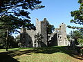 Mallow Castle Rear View, Mallow, North Cork..JPG
