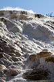 Mammoth Hot Springs 1 (8038955253).jpg