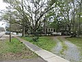 Mandeville Louisiana along the Sidewalk.jpg