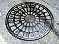 Manhole.cover.in.takaoka.city.jpg