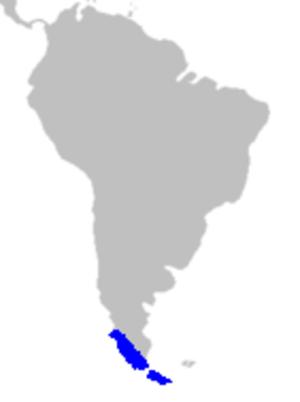 Philesiaceae - Image: Map Philesiaceae