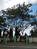 MarikinaCitySportsjf8964 21.JPG