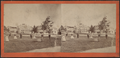 Men and women having a stroll, from Robert N. Dennis collection of stereoscopic views.png