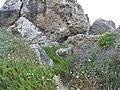 Mgarr, Malta - panoramio (113).jpg