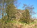 Mid Town farm ruins, Threepwood.JPG