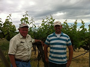 Red Willow Vineyard - Mike Sauer and his son Jonathan, the 4th generation to be farming Red Willow, standing in front of one of the original 1973 Cabernet Sauvignon plantings.