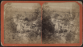 Minekill Falls, Schoharie Co., N.Y, from Robert N. Dennis collection of stereoscopic views.png