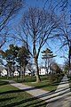 Mineola Memorial Pk td 105.jpg