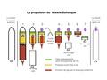 Missile balistique 4.pdf