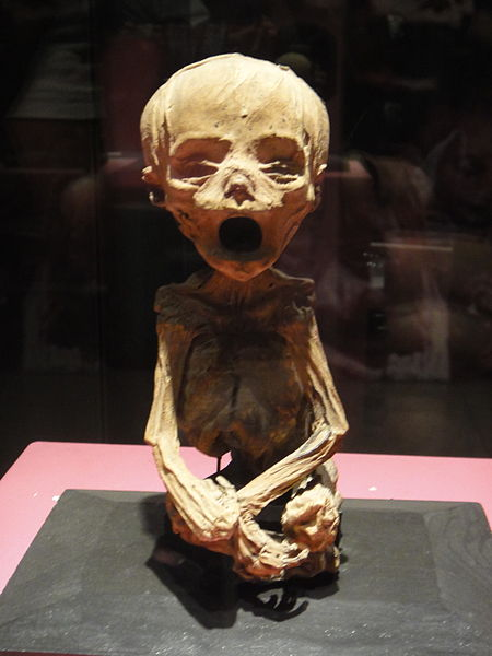 Momia de feto