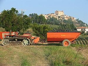 Fiat Trattori - FiatAgri 80-75 crawler tractor.