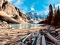 Moraine Lake in Banff National Park with floating woods.jpg