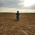Motard in a field.jpg