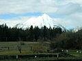 Mount Shasta2.jpg