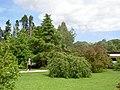 Mount Usher Gardens - geograph.org.uk - 523714.jpg