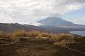 Mt.Fuji from Mt.Teppoginoatama 10.jpg