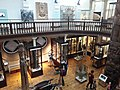 Museum of Archaeology and Anthropology, Cambridge 15.jpg