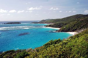 Saint Vincent and the Grenadines - The island of Mustique in the Grenadines