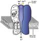 NACh receptor.PNG