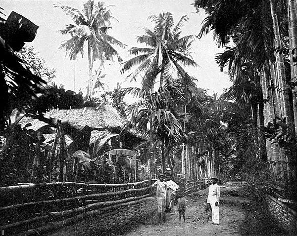 NIE 1905 Philippine Islands - Street scene - Malasiqui.jpg