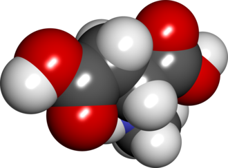 N-Methyl-D-aspartic acid - Image: NMDA spacefill