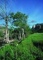 NRCSCO01033 - Colorado (1453)(NRCS Photo Gallery).tif
