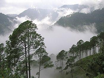 English: Nainital Hills, India