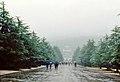 Nankín 1978 08.jpg