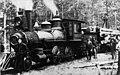 Narrow gauge logging (45718690711).jpg