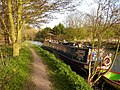 Narrowboat on the River Stort, Bishops Stortford - geograph.org.uk - 154813.jpg