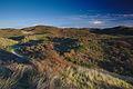 Nationaal Park Zuid-Kennemerland (25).jpg