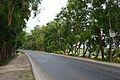 National Highway 7 - Dighalia - Faridpur 2015-05-29 1337.JPG