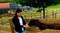 Natural Bridge Zoo (5857682578).jpg