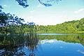 Naturschutzgebiet Krumme Laake Berlin 1.jpg