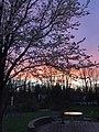 New Jersey Sunsets.jpg