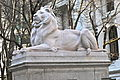 New York Public Library Lion.JPG