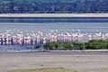 Ngorongoro 2012 05 30 2449 (7500928852).jpg