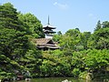 Ninna-ji National Treasure World heritage Kyoto 国宝・世界遺産 仁和寺 京都87.JPG