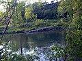 Nisava - panoramio - tromi (3).jpg