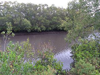 Norman Creek (Queensland)