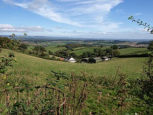 Vale of Taunton and Quantock Fringes - The Vale of Taunton