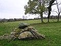 North of Burnfoot - geograph.org.uk - 1037626.jpg