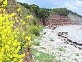 North of Lavernock Point - geograph.org.uk - 836053.jpg