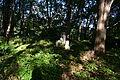 Old cemetery in Küstrin-Kietz 206.JPG
