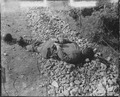 One of four Americans of the 21st Infantry Regiment found between the forward observation post and the front line.... - NARA - 531361.tif