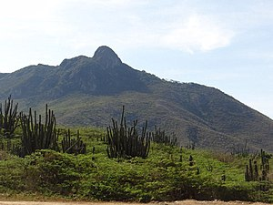 Paraguana xeric scrub - Cerro Santa Ana on Paraguana