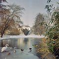 Overzicht van de vijver in het Slotpark met zicht op de achtergevel - Oosterhout - 20383751 - RCE.jpg